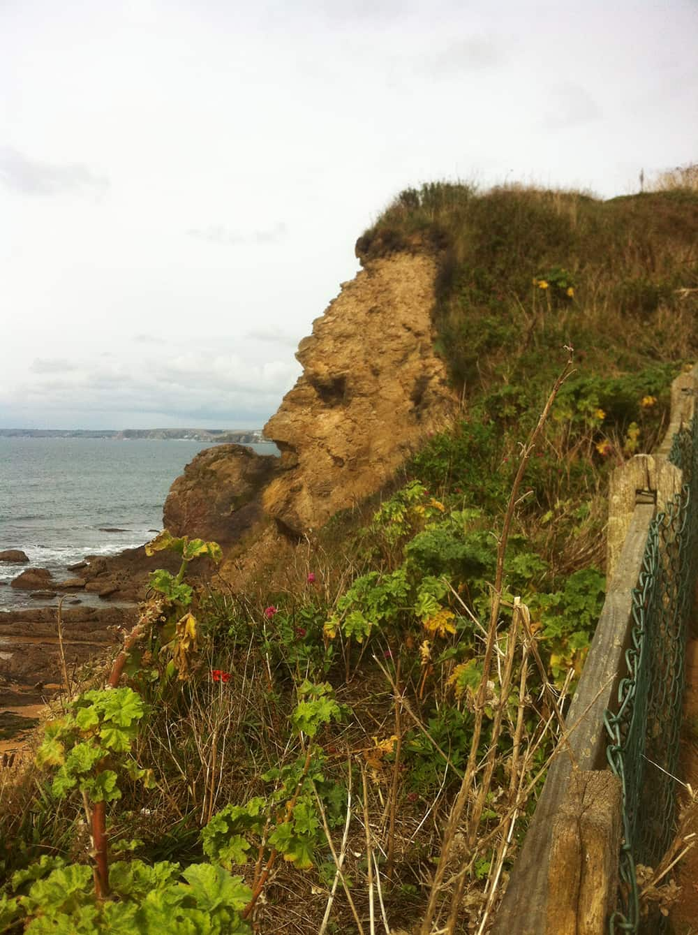 hope-cove-cliff-face