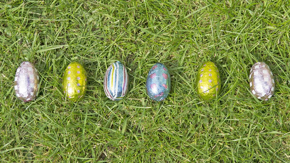 Easter eggs lined up for an egg hunt