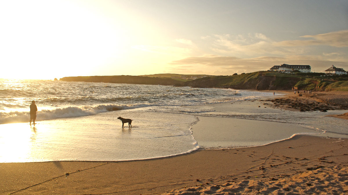 Thurlestone-dog-friendly