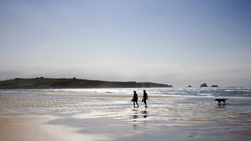 couple-dog-beach