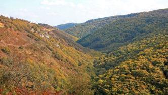 teign-valley