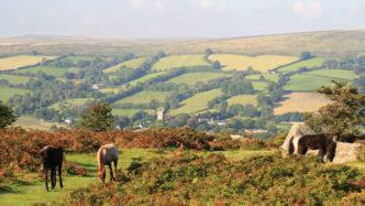 widecombe-dartmoor