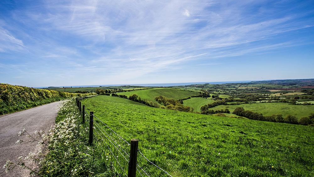 eggardon-hill-dorset